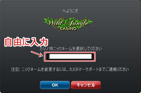 ワイルドジャンカジノ登録画像8